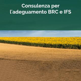 BRC e IFS